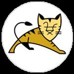 tomcat_server
